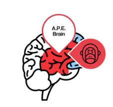 The A.P.E. Brain